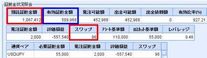 20081217_fx.JPG