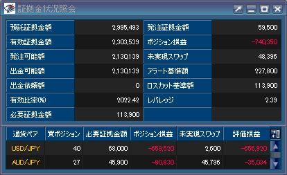 20110114_fx.JPG