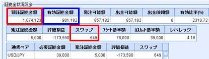 20081125_fx.JPG