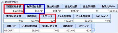 20081225_fx.JPG