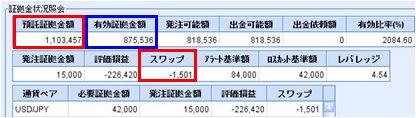20090223_fx.JPG