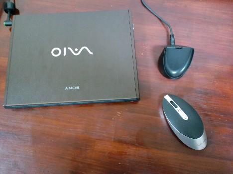 20090720_mouse1.JPG