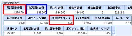 20090825_fx.JPG
