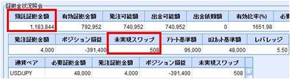 20091104_fx.JPG