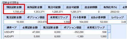 20100104_fx.JPG