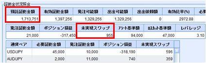 20100106_fx.JPG