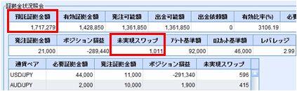 20100107_fx.JPG
