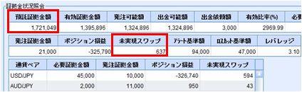 20100111_fx.JPG