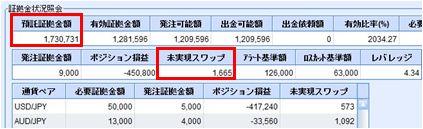 20100129_fx.JPG