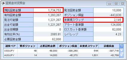 20100204_fx.JPG