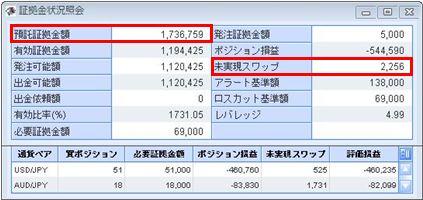 20100205_fx.JPG