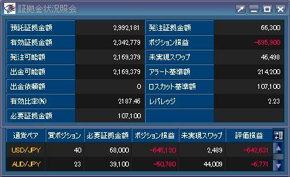 20110107_fx.JPG
