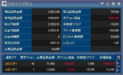 20110405_fx.JPG