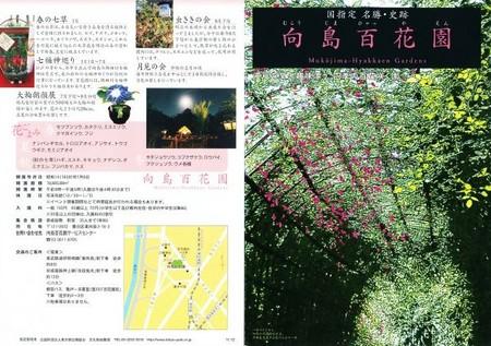 20130107_mukoujima-01.jpg