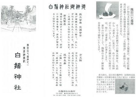 20130107_shirohige-01.jpg