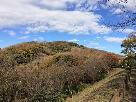 20131130_衣張山.jpg