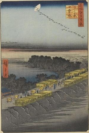 Hiroshige_MeishoEdo_101.jpg